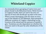 whiteland coppice