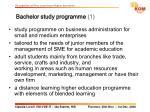 bachelor study programme 1