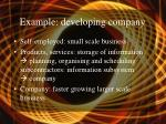example developing company