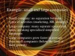 example small and large companies
