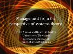 management from the perspective of systems theory