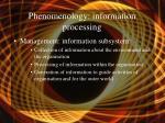 phenomenology information processing