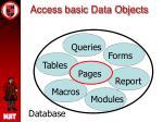 access basic data objects