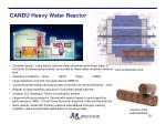 candu heavy water reactor