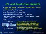 cv and bootstrap results