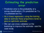 estimating the prediction error