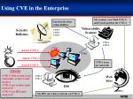using cve in the enterprise
