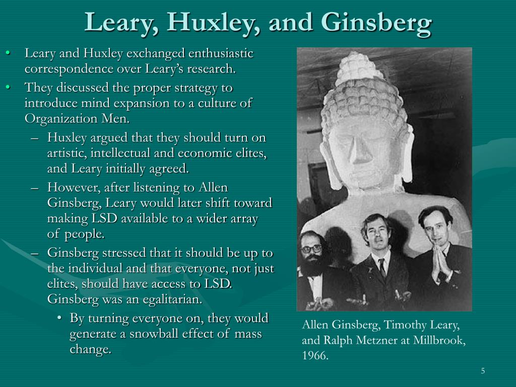 Leary, Huxley, and Ginsberg