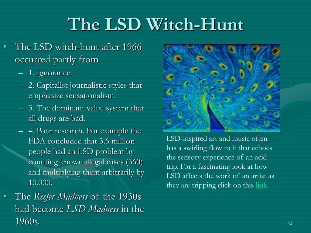 The LSD Witch-Hunt