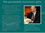the psychedelic movement splits
