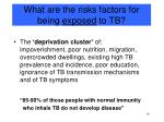 what are the risks factors for being exposed to tb