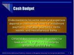cash budget30
