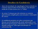 detalhes da candidemia26