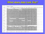 what does data look like