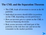 the cml and the separation theorem