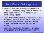 new social risks groups