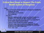 critical next steps to support the public health system of response