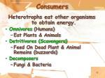 consumers11