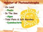 habitat of photoautotrophs