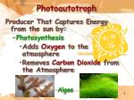 photoautotroph