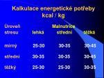 kalkulace energetick pot eby kcal kg