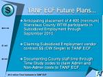tanf ecf future plans