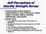self perceptions of identity strength survey