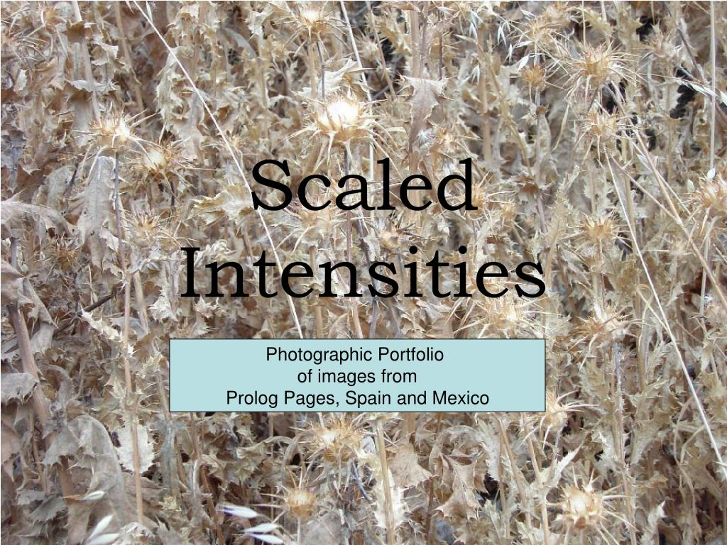 scaled intensities l.