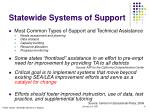 statewide systems of support6