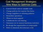 cost management strategies nine ways to optimize costs