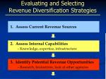 evaluating and selecting revenue diversification strategies