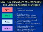 non fiscal dimensions of sustainability the california wellness foundation