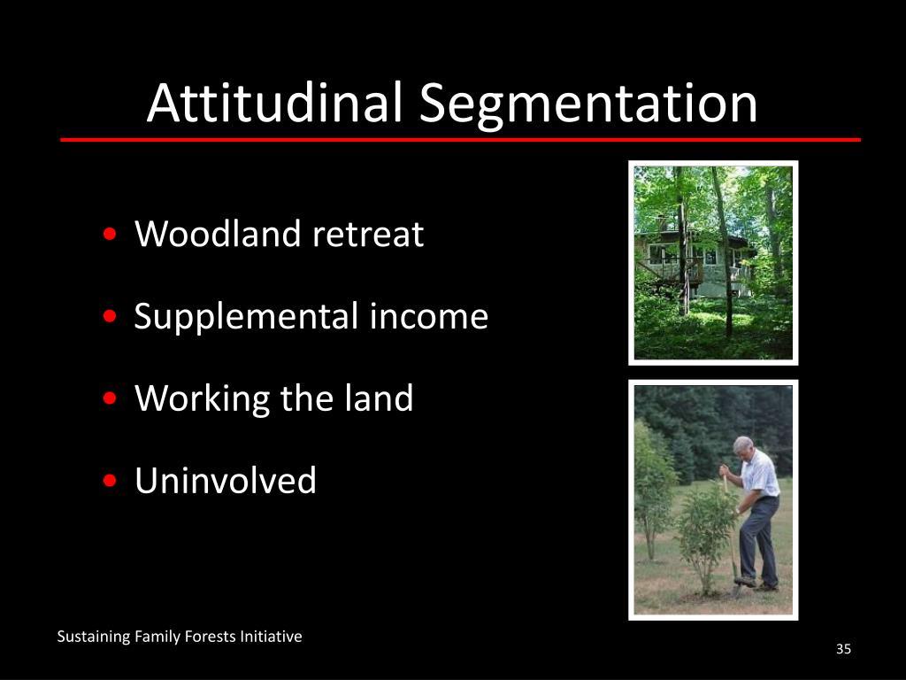 Attitudinal Segmentation