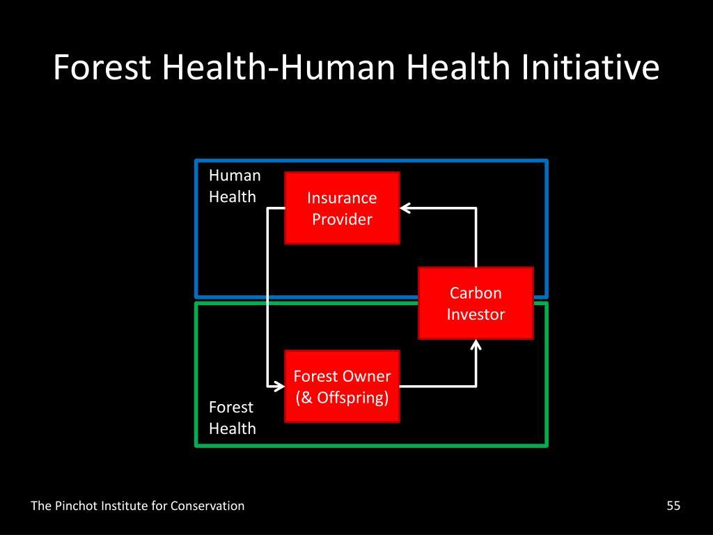 Forest Health-Human Health Initiative