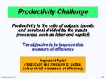 productivity challenge