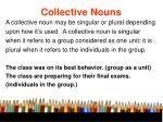 collective nouns41
