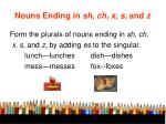 nouns ending in sh ch x s and z