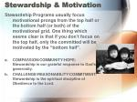 stewardship motivation