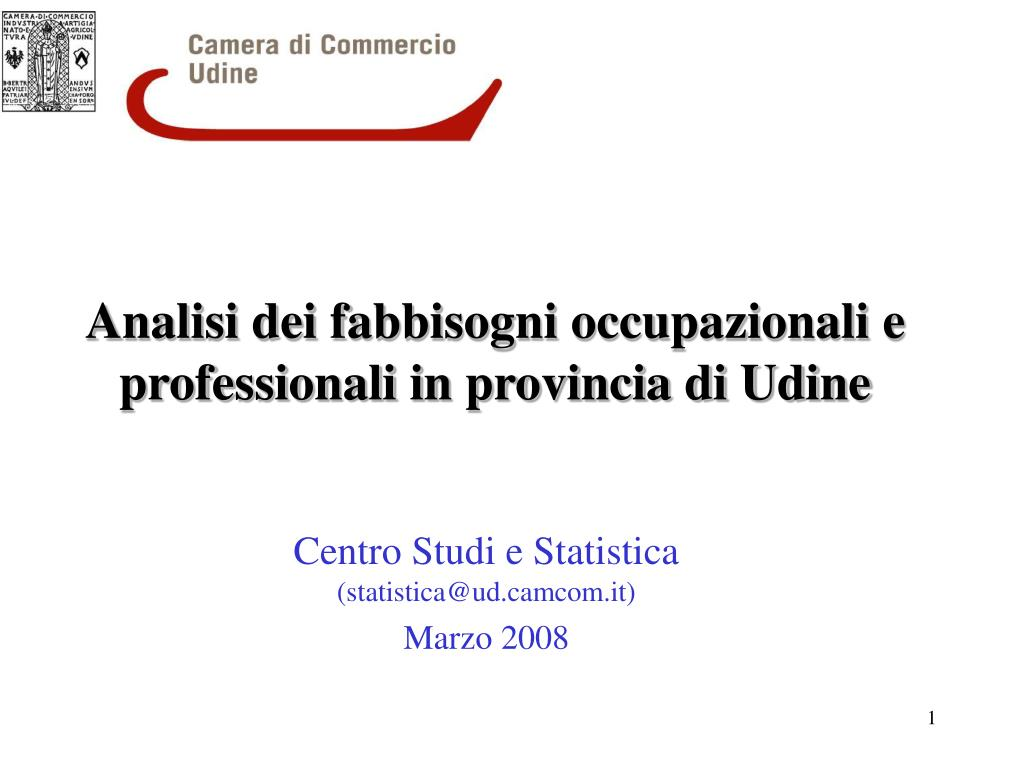 analisi dei fabbisogni occupazionali e professionali in provincia di udine l.