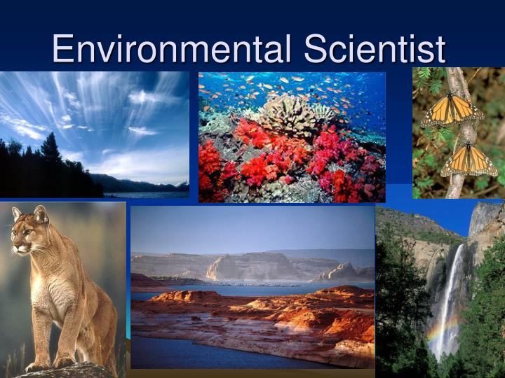 environmental scientist n.