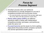 focus by process segment