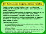 2 3 forma o de imagens coloridas na retina