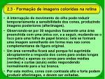 2 3 forma o de imagens coloridas na retina9