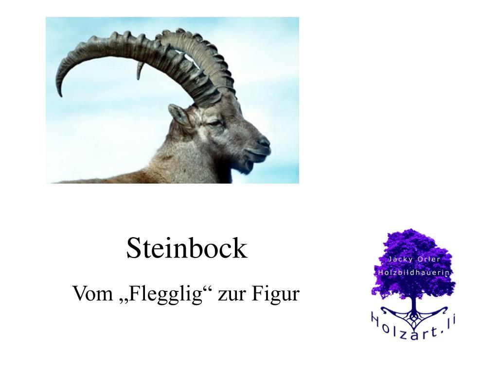 steinbock l.