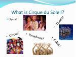 what is cirque du soleil