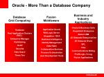 oracle more than a database company