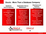 oracle more than a database company25