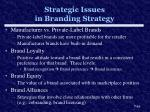 strategic issues in branding strategy