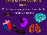 baz ln metabolismus bmr