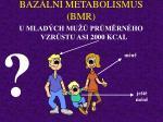 baz ln metabolismus bmr4